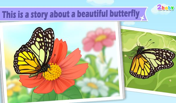 Butterfly - Insect World poster