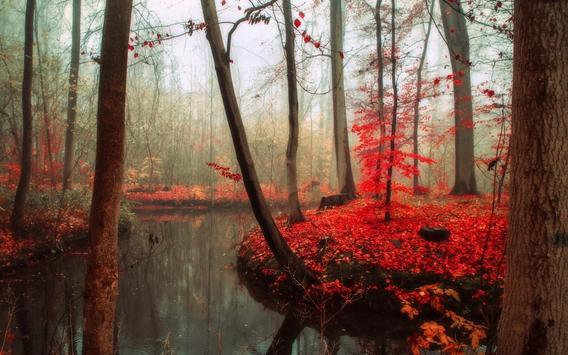 Best Autumn Wallpapers apk screenshot