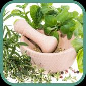 Jamu Herbal Tradisional no.1 icon