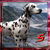303 Dalmatian SIMULATOR 3D icon