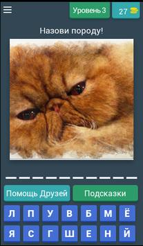 БЕЗ КОТА ЖИЗНЬ НЕ ТА - УГАДАЙ ПОРОДУ КОШЕК! screenshot 3