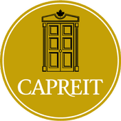Cap Sphere Cardboard icon