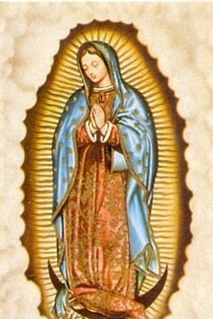 Fotos Virgen Guadalupe Tatuaje poster