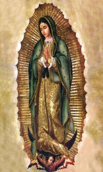 Nuestra Virgen de Guadalupe screenshot 6