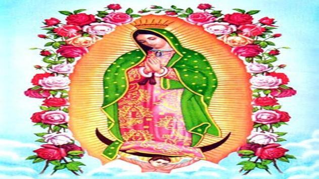 Nuestra Virgen de Guadalupe screenshot 9