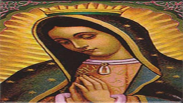 Nuestra Virgen de Guadalupe screenshot 13
