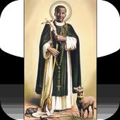 San Martin de Porres icon