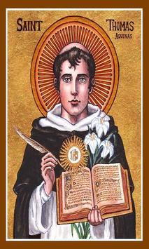 Santo Tomas de Aquino screenshot 3