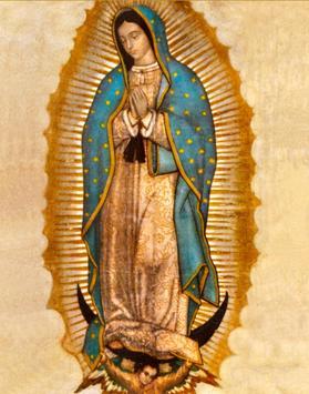 Virgen de Guadalupe Fecha screenshot 1