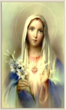 Virgen Maria en el Antiguo Testamento apk screenshot