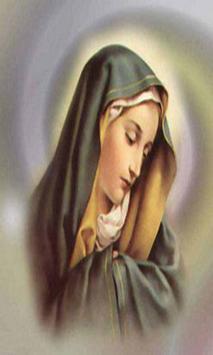 Virgen Maria Imagenes Gratis screenshot 2