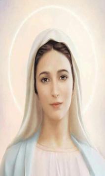 Virgen Maria Novena 2 poster