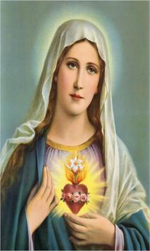 Virgen Maria Novena apk screenshot