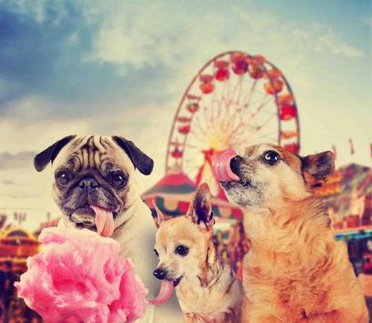 Wallpaper With Dogs screenshot 21