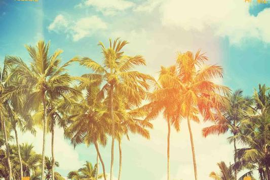 wallpaper palm tree apk download free personalization app for