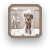 Dog Wallpapers For Free icon