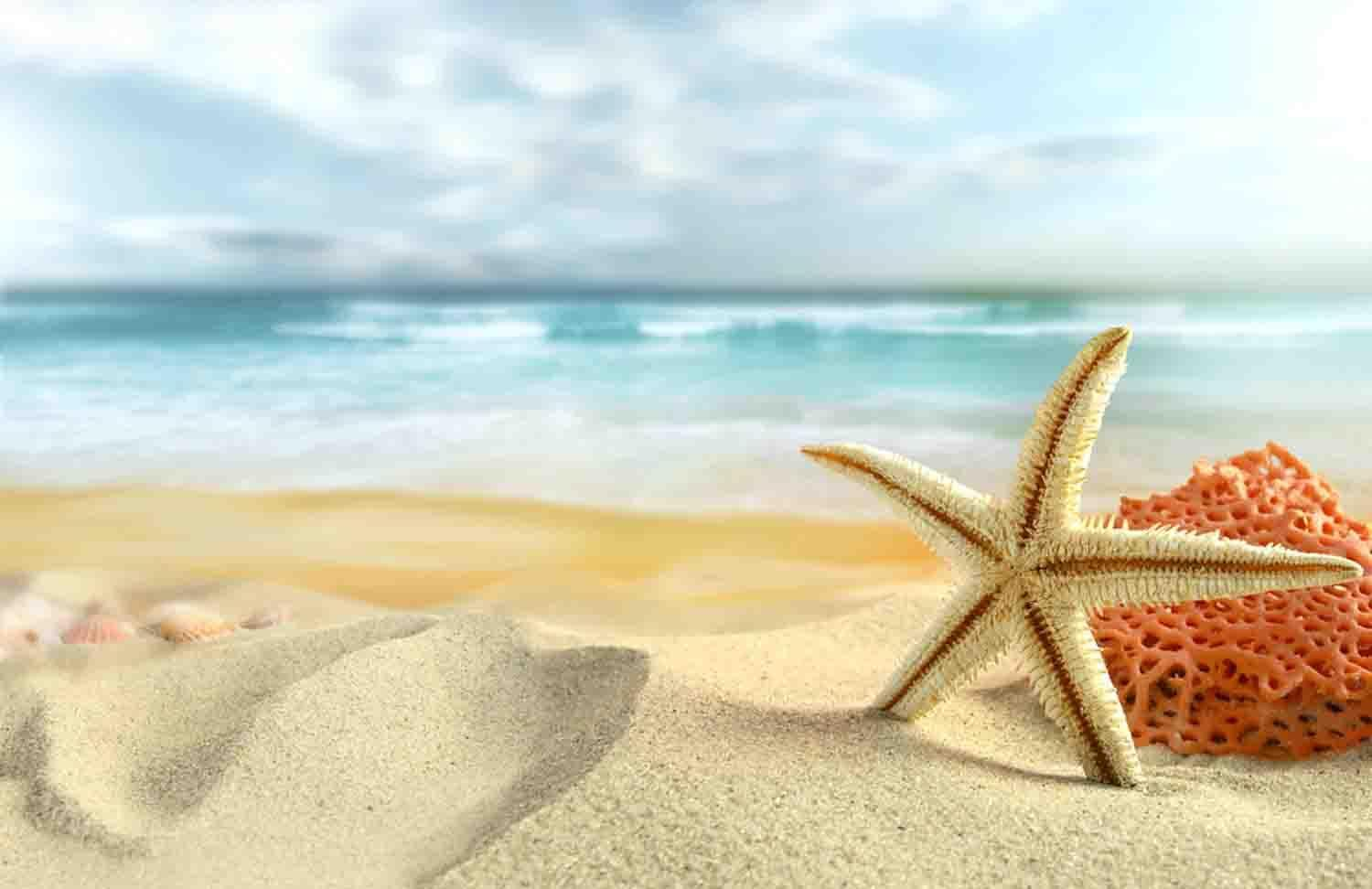 Ocean Beach Wallpapers For Android Apk Download