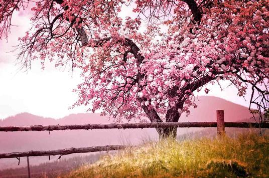 Spring Wallpaper screenshot 15