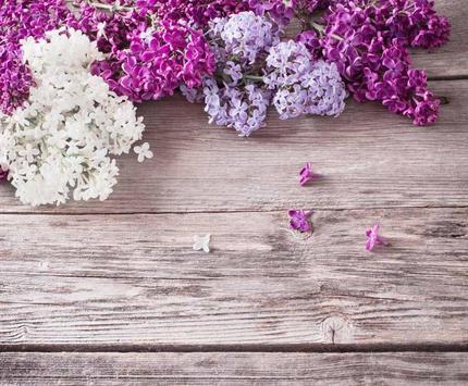 Spring Flowers Free Wallpaper screenshot 7