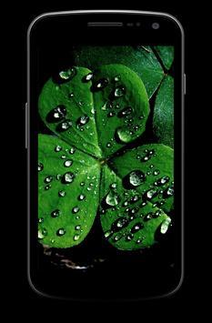 Shamrock Themes Luck Wallpaper apk screenshot