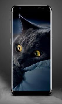 Cat Lock Screen screenshot 3