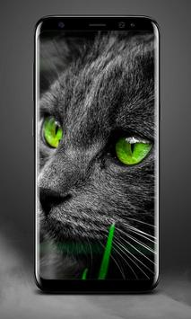 Cat Lock Screen screenshot 4