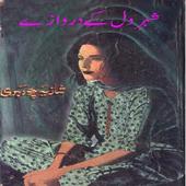 Shahr E Dil Kay Darwazy icon