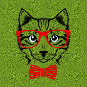 Cat Lovers Wallpaper icon