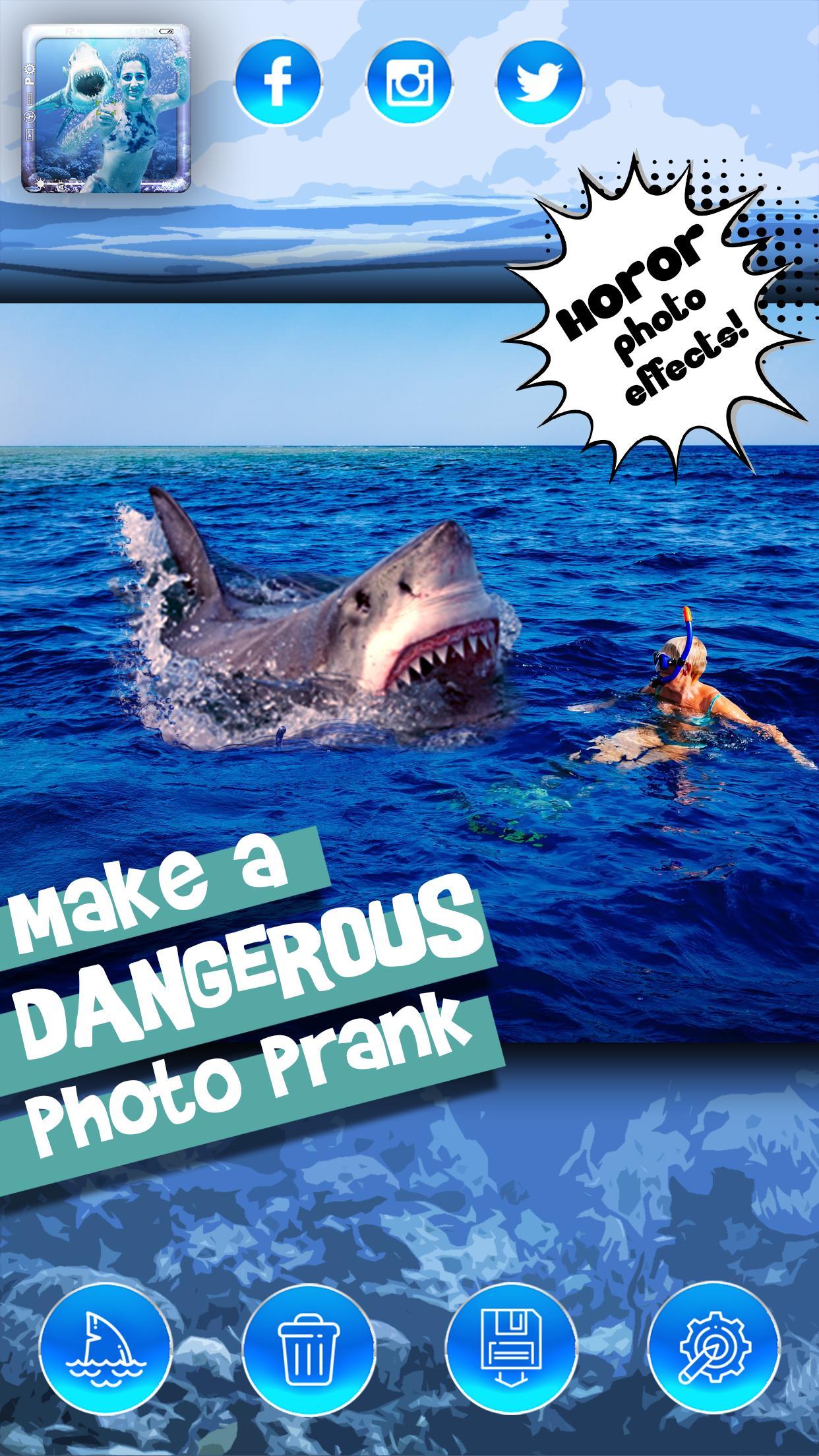 Акула - 87 фото самого идеального хищника морей и океанов   2208x1242