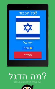מה הדגל? screenshot 1