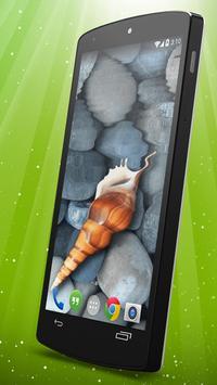 Sea Shell Live Wallpaper apk screenshot