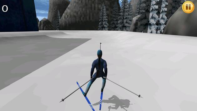 Biathlon Animal Killing 3D poster