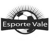 Radio Web Esporte Vale icon