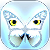 Guess Butterfly Puzzle icon