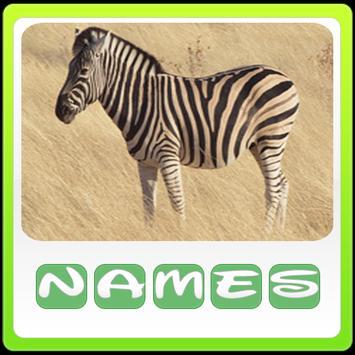 Animals Quiz screenshot 4