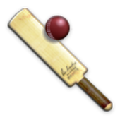 Cricket Maze icon