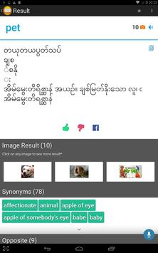 Shwebook Dictionary Pro screenshot 11