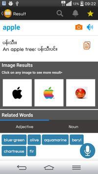 Shwebook Dictionary Pro screenshot 4