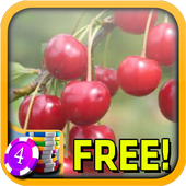 3D Sour Cherry Slots - Free icon