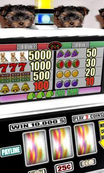 3D York Terrier Slots - Free screenshot 1
