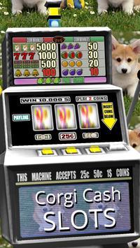 3D Corgi Cash Slots apk screenshot