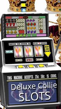 3D Deluxe Collie Slots screenshot 2