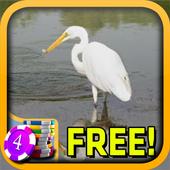 3D Egret Slots - Free icon