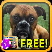 Boxers Slots - Free icon