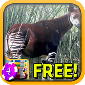 3D Okapi Slots - Free icon