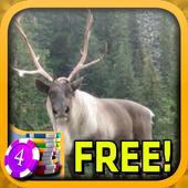 3D Caribou Slots - Free icon