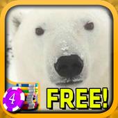 3D Polar Bear Slots - Free icon