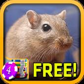 Gerbil Slots - Free icon