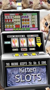 3D Kitten Slots - Free apk screenshot