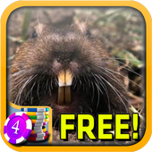 Gopher Slots - Free icon